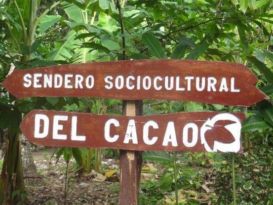"""Dans la ferme """"Sendero Sociocultural del Cacao"""" en direction du jardin avec des Cacaoyers à Baracoa à Cuba photo blog voyage tour du monde https://yoytourdumonde.fr"""