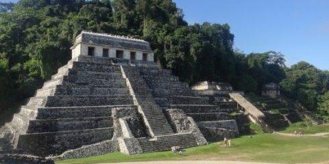 Le magnifique site maya de Palenque avec la jungle en arrière plan photo blog voyage travel https://yoytourdumonde.fr