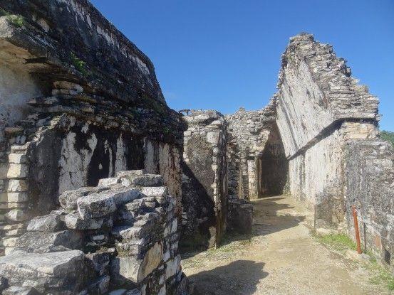 Dans les magnifiques ruines Maya de Palenque photo blog voyage tour du monde https://yoytourdumonde.fr