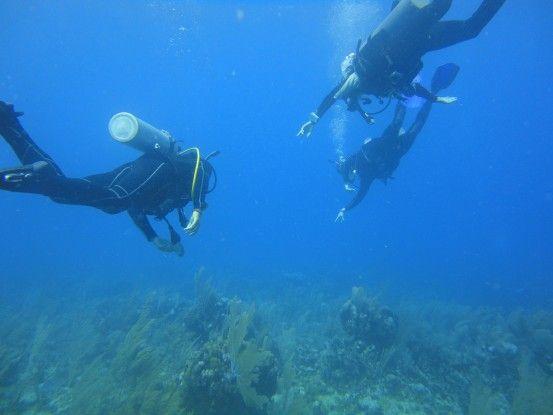 Honduras utila plongée open water photo blog voyage tour du monde travel https://yoytourdumonde.fr