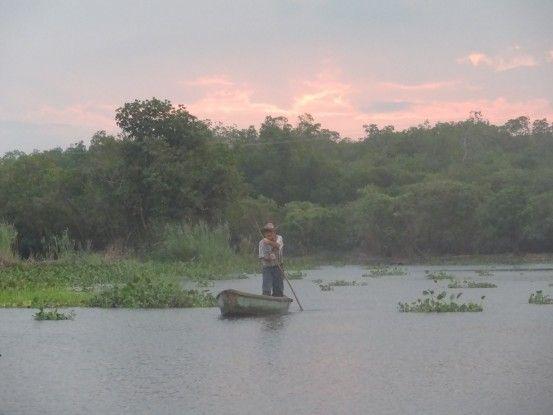 La Réserve de Monterrico au Guatemala est un lieu unique pour admirer les mangroves les oiseaux photo blog voyage tour du monde travel https://yoytourdumonde.fr