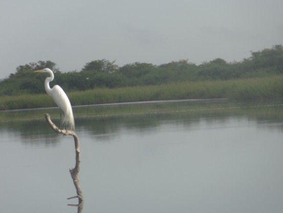 Rio Pasion Aguateca photo blog voyage tour du monde travel voyage https://yoytourdumonde.fr