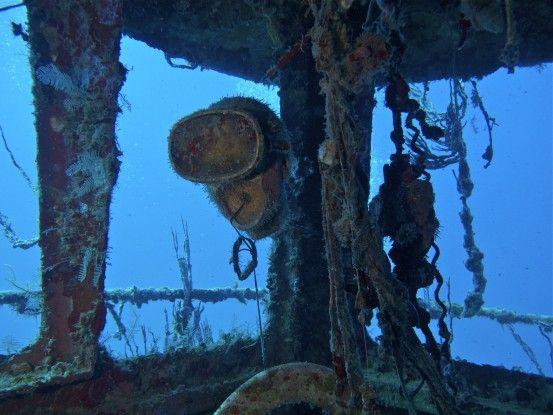 En plongée sur l'Ile Utila au Honduras beaucoup de poissons à voir et bateaux sous l'eau photo blog voyage tour du monde travel https://yoytourdumonde.fr