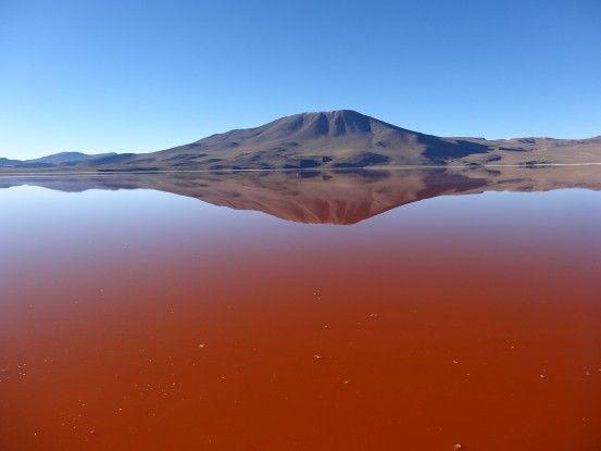 bolivie-sud-lipez-laguna-colorada-voayge