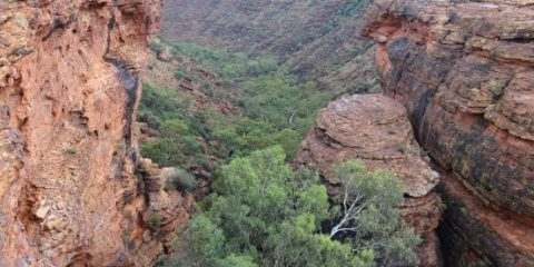 kings-canyon-australie-outback-travel-voyage