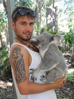 Australie- Brisbane: Et voici le koala!