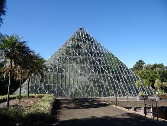 australie-botanique-sydney-voyage-travel