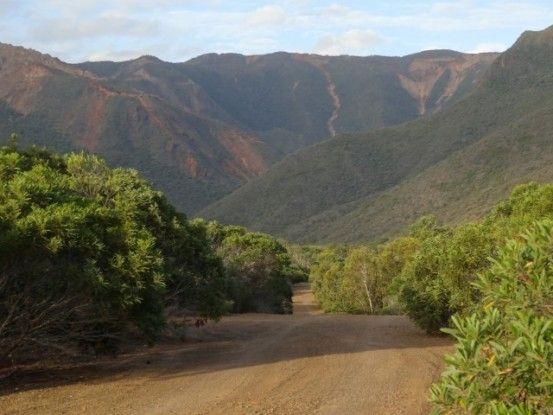 Nouvelle-Caledonie: Entre espace vert et montagne!
