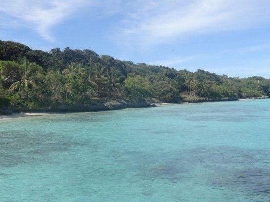 coraux-ile-lifou