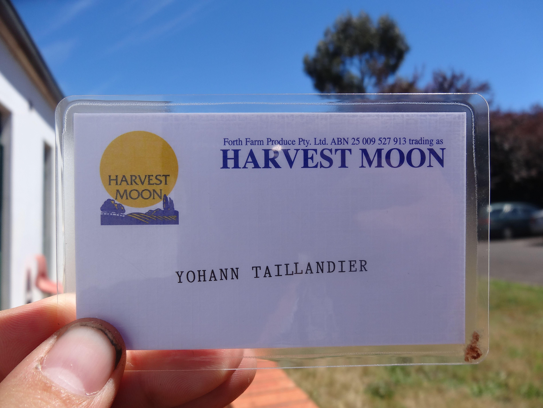 Australie- Tasmanie: Ma carte de boulot est arriveer.