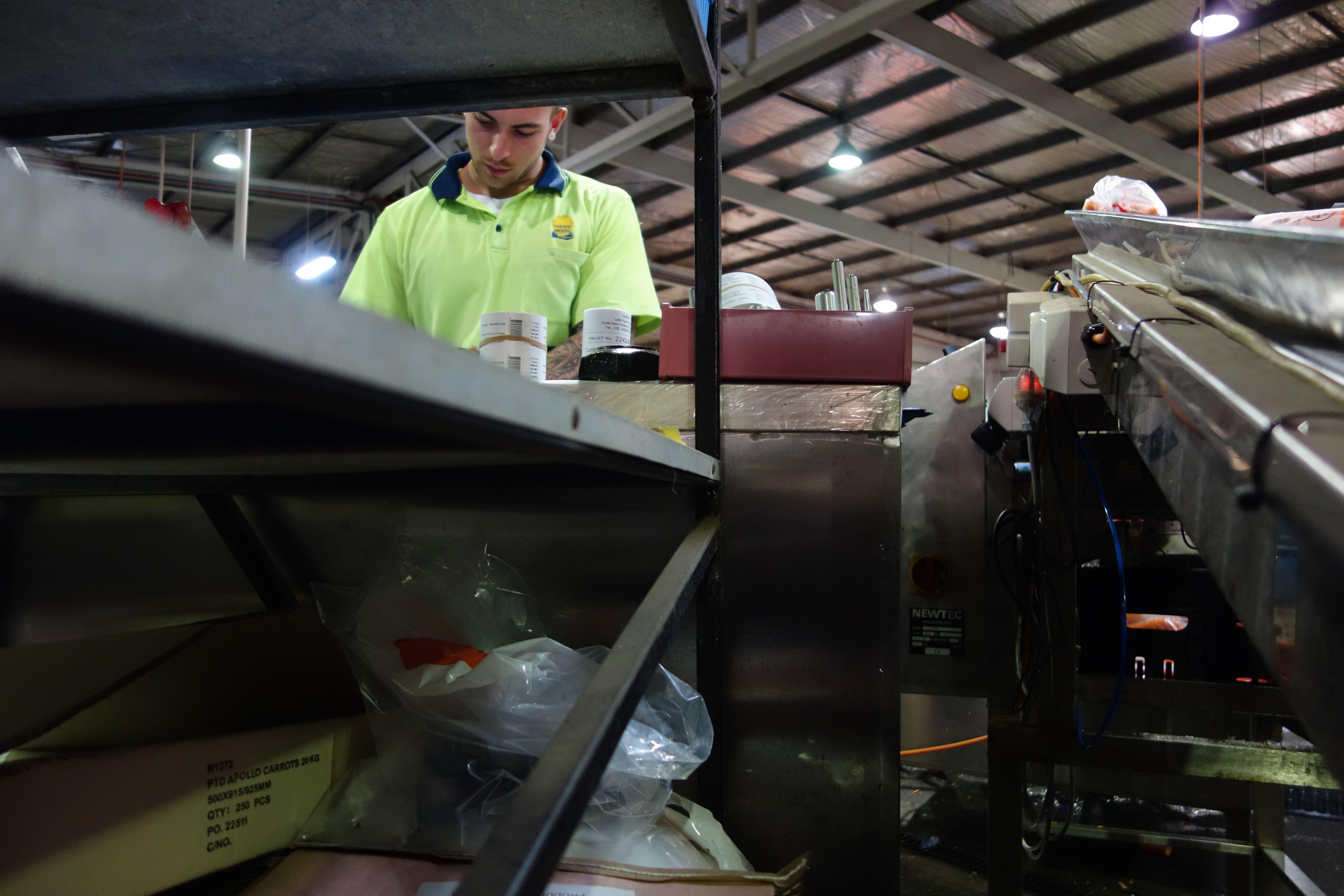 Australie- Tasmanie: Ahhh Andrew le superviseur. D'ailleurs j'avais aussi Andrew l'année derniere.