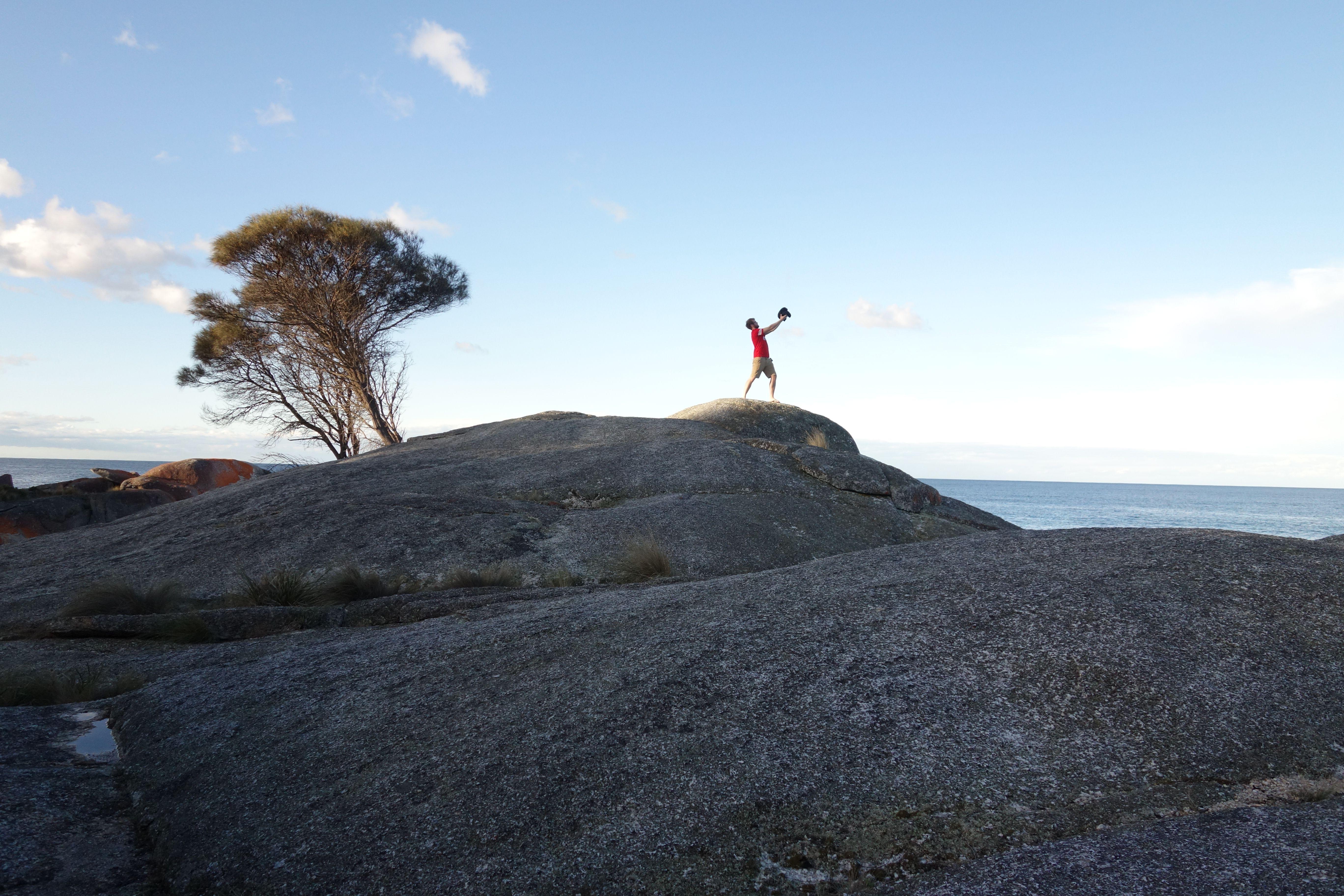 Australie- Tasmanie: Le roi Lyon!