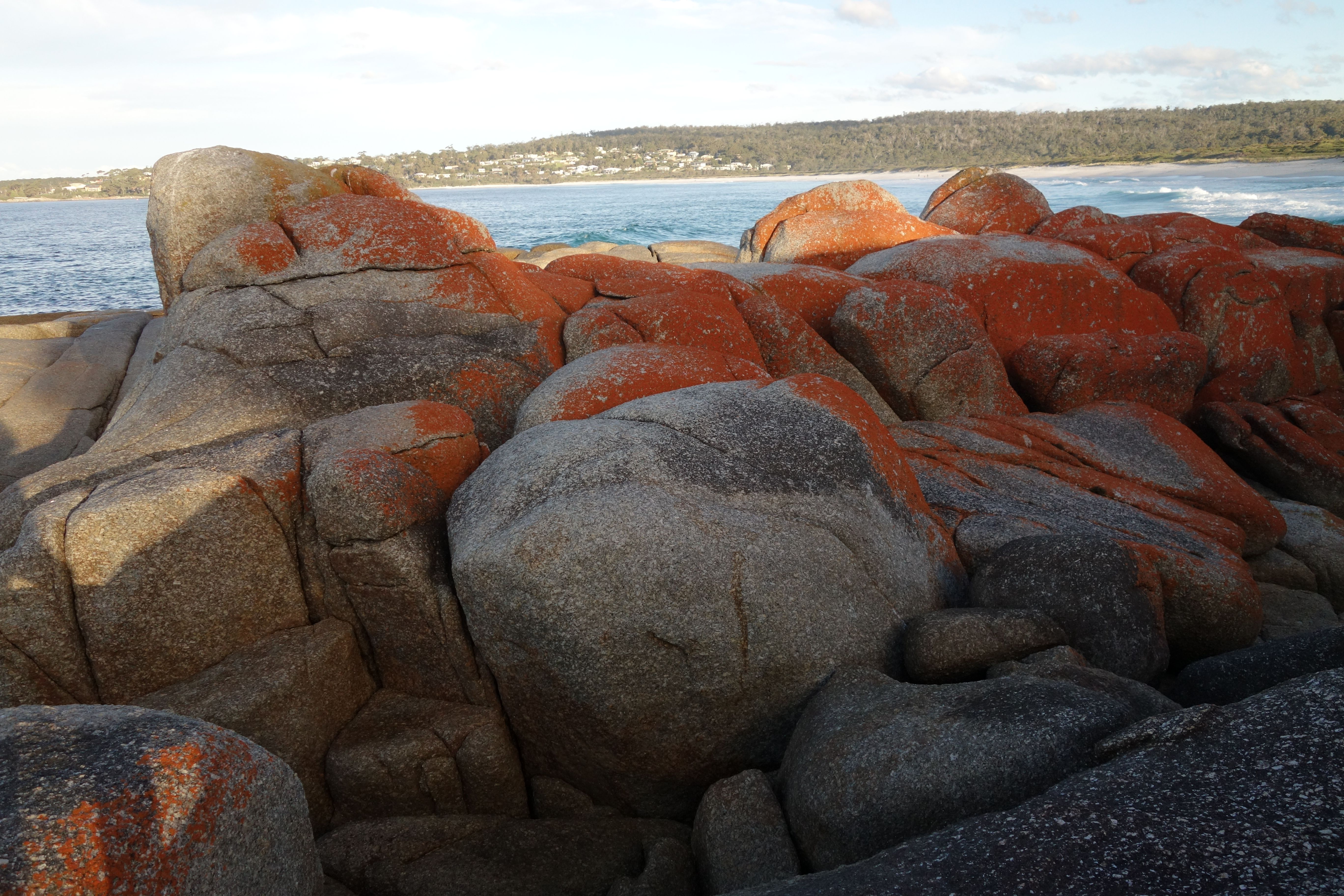 Australie- Tasmanie: Bay of Fires.