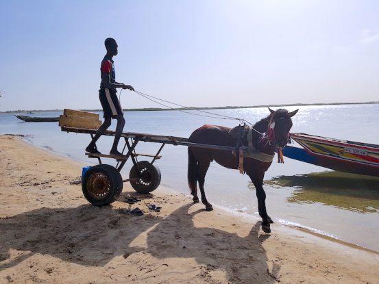 A Mar Lodj les voitures sont inexistantes places aux formules 1 c'est à dire à la caleche. Photo blog voyage tour du monde https://yoytourdumonde.fr