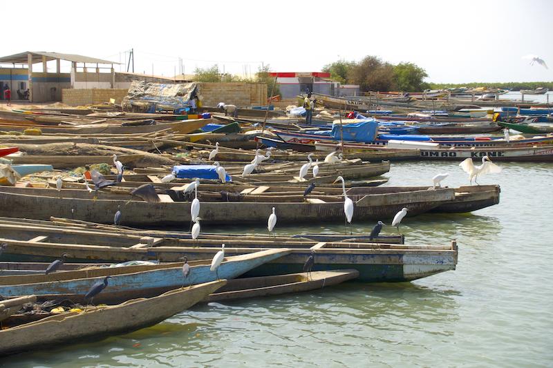 Le port de Ziguinchor photo blog voyage tour du monde https://yoytourdumonde.fr