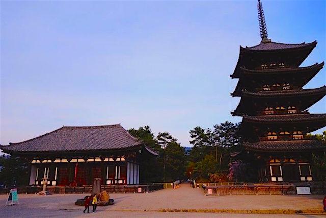 Gros coup de coeur pour Nara au japon! Ville à visiter! Photo blog tour du monde http://yoytourdumonde.fr