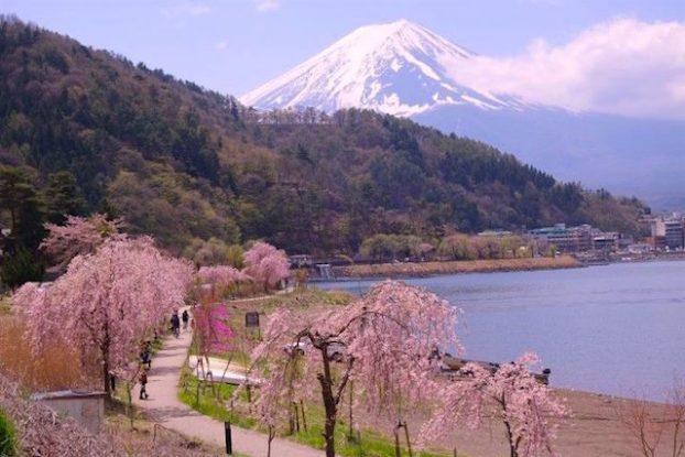 Japon vue sur le mont fuji lac Kawaguchi ko photo blog voyage tour du monde https://yoytourdumonde.fr