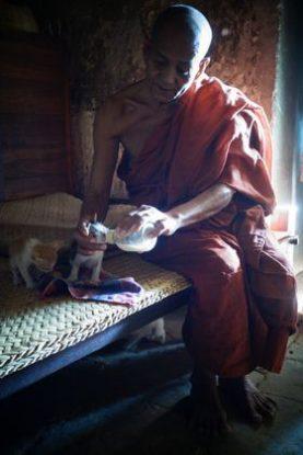 moine-bouddhiste-myanmar-birmanie