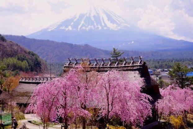 Superbe petit village médiéval de Saiko Iyashi no Sato Nemba avec vue sur le Mont Fuji photo blog voyage tour du monde https://yoytourdumonde.fr