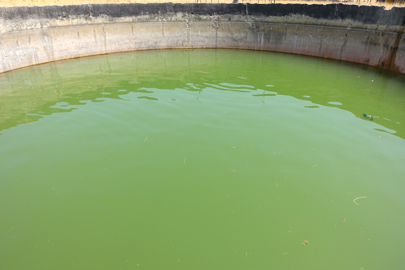 Citernes d'eaux dans le village d'Eloubaline en Casamance au Sénégal photo blog voyage tour du monde https://yoytourdumonde.fr