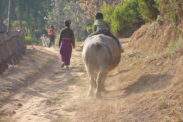 la vie continue du coté des montagnes de l'etat Shan malgré des tensions photo blog voyage tour du monde https://yoytourdumonde.fr