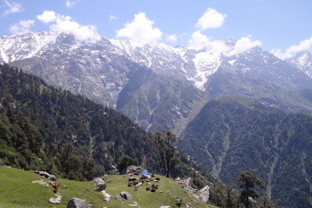 Trek du Triund Hill à Dharamsala photo blog voyage tour du monde inde himalaya https://yoytourdumonde.fr