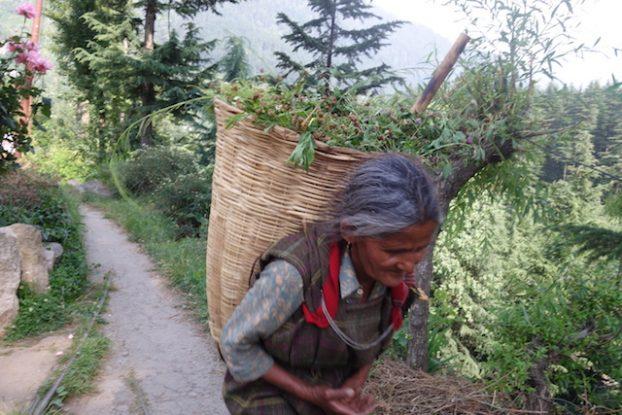 portrait locaux manali inde photo voyage tour du monde https://yoytourdumonde.fr