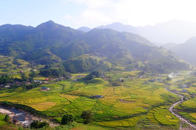 Beauté des rizières en terrasses de Sapa au Vietnam photo blog voyage tour du monde http://yoytourdumonde.fr