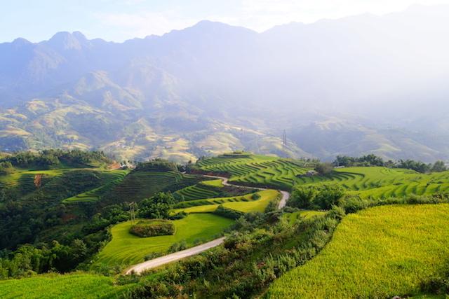 Vietnam sapa terrasse tour du monde photo blog http://yoytourdumonde.fr