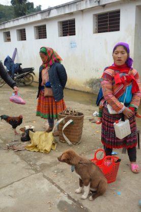 Vente de chien pour les manger au marché de Bac Ha