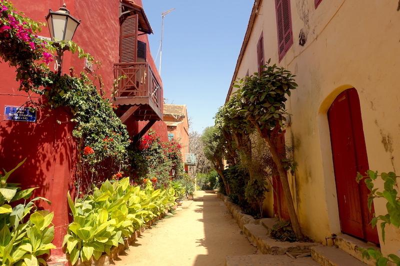 Les ruelles à Gorée sont magnifique, la preuve en image. Photo blog voyage tour du monde https://yoytourdumonde.fr