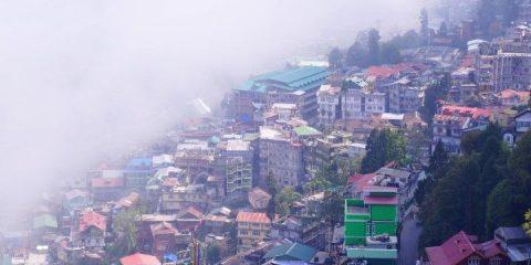 Le brouillard peut etre omnipresent du coté de Darjeeling en Inde. Photo blog tour du monde http://yoytourdumonde.fr