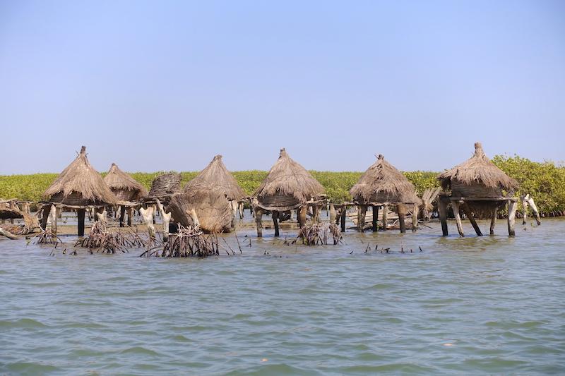 C'est seulement qu'en pirogue que vous allez pouvoir visiter les anciens grenier à mil sur pilotis de l'ile aux coquillages. Photo blog voyage tour du monde https://yoytourdumonde.fr