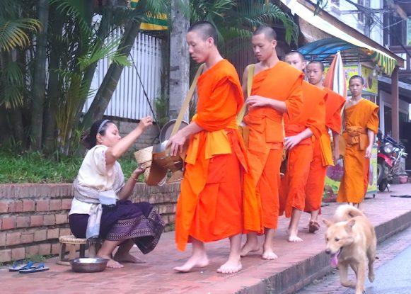 Cérémonie aumone luang prabang laos photo blog voyage tour du monde https://yoytourdumonde.fr