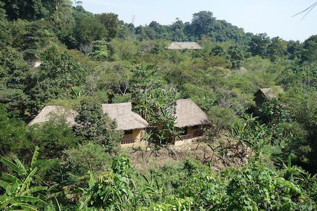 A kep au Cambodge une randonnée pedestre vous y attend avec meme un hotel dans la jungle à l'abandon! Article commplet sur mon blog: http://yoytourdumonde.fr