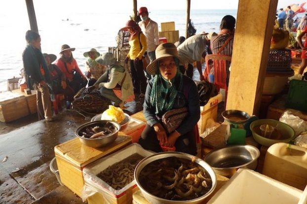 J'ai beaucoup aimé le marché de Kep un lieu magique et unique ou vous etes directement avec la population locale. article complet sur mon blog de tour du mode https://yoytourdumonde.fr
