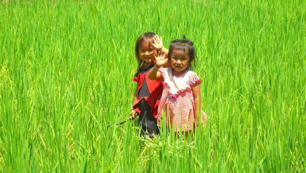 Petite fille du Laos dans les champs près de la ville de Vang Vian photo blog voyage tour du monde https://yoytourdumonde.fr
