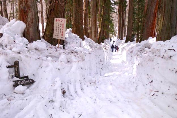 De la neige en veux-tu en voila dans les Alpes Japonaises. Photo blog voyage tour du monde https://yoytourdumonde.fr