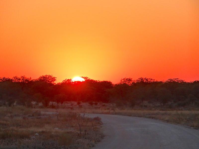 Le soleil se lève sur Etosha en Namibie photo blog voyage tour du monde travel Afrique https://yoytourdumonde.fr