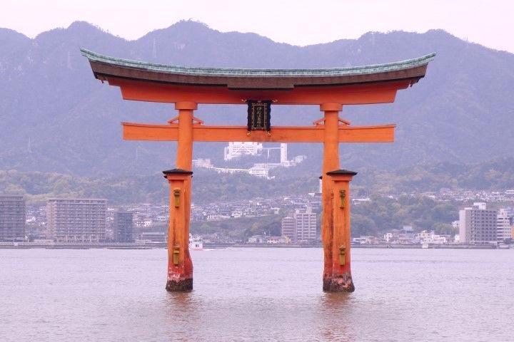 Celebre tori de Miyajima photo blog voyage tour du monde https://yoytourdumonde.fr