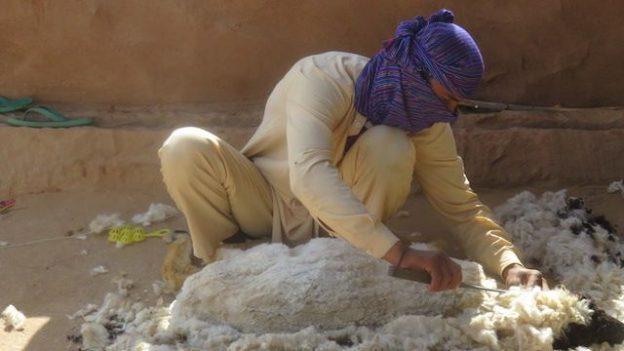 Il doit etre difficile de vivre dans le desert de Thar dans le Rajasthan en Inde et pourtant des locaux y vivent et travaillent photo voyage blog tour du monde https://yoytourdumonde.fr
