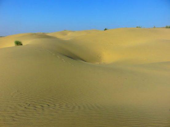 Dunes du desert de thar en inde dans le rajasthan photo blog tour du monde https://yoytourdumonde.fr