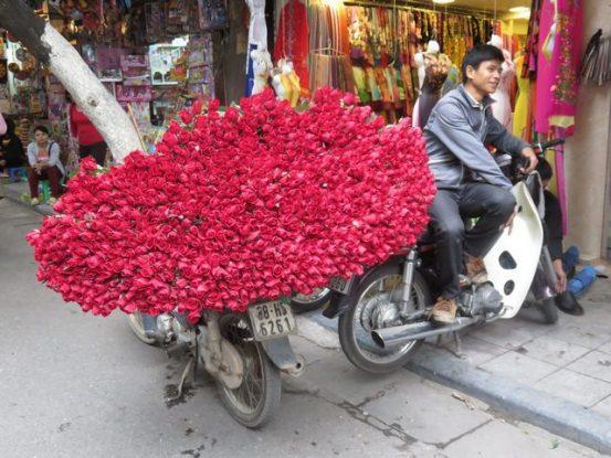 Hanoi- Vietnam: Vendeur de roses du cote d'Hanoi. Sacree bouquet!!!
