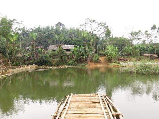 vinlinh-travel-voyage-vietnam-campagne-transfort