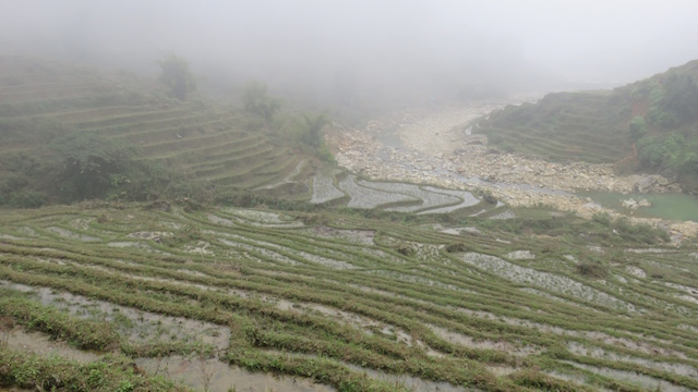 Sapa rizieres terrasse photo blog tour du monde http://yoytourdumonde.fr